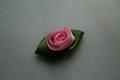 Tygros i rosa
