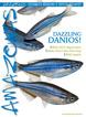 Amazonas Magazine - November/December 2016