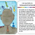 KORTLEK/MEMORY yogapotatisarna