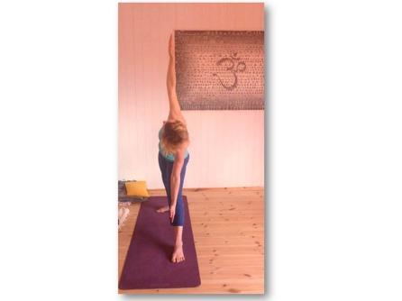 Ashtanga yoga workshop Gnesta