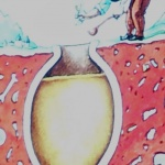 En amfora som användes för att göra vin.