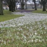 Våren är i antågande!