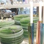 Till framdukat bord, med glastallrikar...