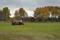 Kretslopp, gräset iform av kodynga tillbaka till marken