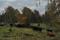 Laggårdshagen