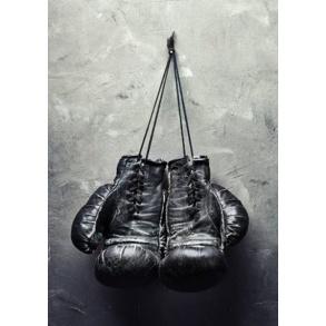 Poster 30x40 Boxhandskar -