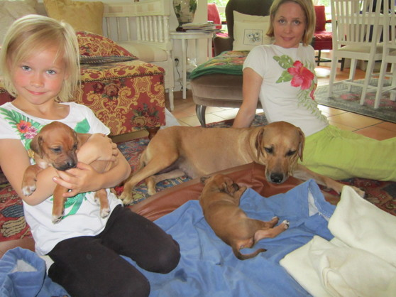 Ella, Anna, Dinnie & valpar 30 Juni