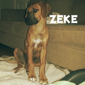 """Zeke"" Drakensridge Duke Of Herathas 13 September"