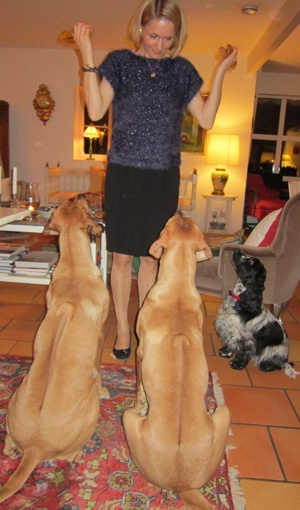 Dinnie, Diva & Issie får godis av Anna