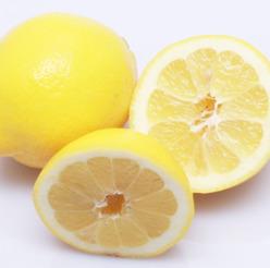 Mousse - Citron
