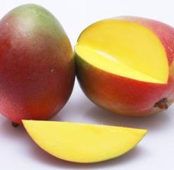 Mousse - Mango