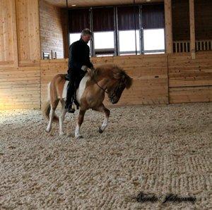 Atli rider Freyja i lördags