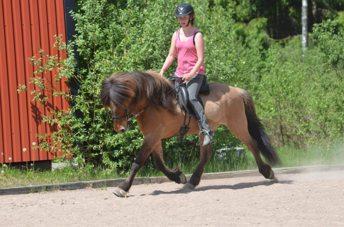 Gandur och jag rider för Hinni sommaren 2012