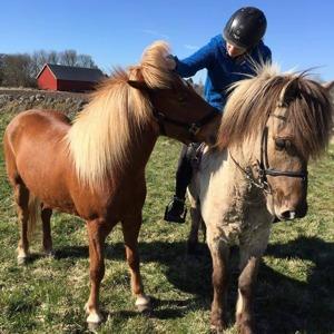 Judit som handhäst och Tolli som ridhäst