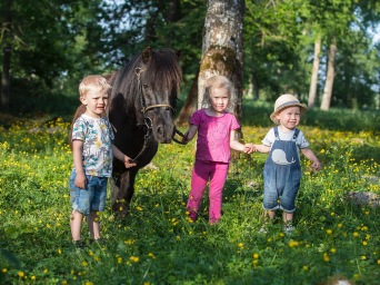 Walter, Svea och Einar med shettisen Nappe sommaren -18