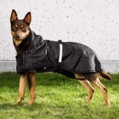 Hundregntäcke med stoppning – Back on Track