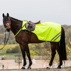 HS Skrittäcke Reflex - Ponny