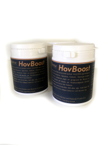 HovBoost Probihorse