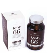 KSM-66 (Fullspektrum Ashwaganda)