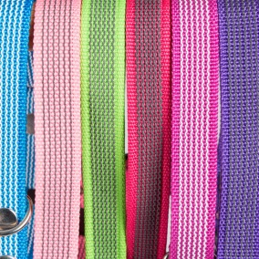 Antiglid Hundhalsband Globus - flera färger