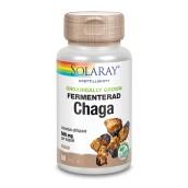 Fermenterad Chaga 60k veg - Solaray