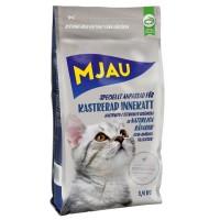 Mjau Kastrerad Innekatt 1,4 kg (2019-08-22)