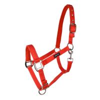 HS Grimma – Minishetland Röd