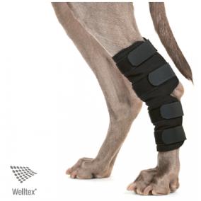 Hundhasskydd Back on Track