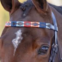 Shire Pannband Blenheim Leather Polo Orange/blå/ljusblå/röd
