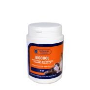 Biocool hund - Lugn och stabil på naturligt vis