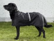 Hundregntäcke utan stoppning – Back on Track