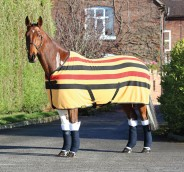 Shire Wessex Newmarket Fleece Rug