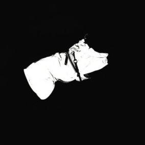 Reflextäcke Kenzo light - Dogman