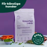 Buddy hundfoder - Grass-Fed Lamb / Gräsätande Lamm