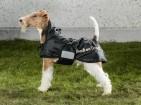 Hundtäcke Standard (fodrat) – Back on Track