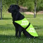 Reflextäcke Hund