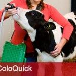 produkter_coloquick