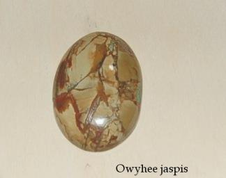 Owyhee Jaspis handpolerad sten