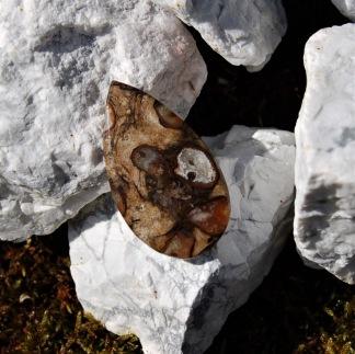 Rock Kalcedon cabochon 37,5 x 21mm