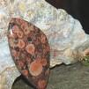 Poppy Jaspis Morgan Hill cabochon 47x25mm