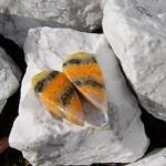 Bumblebee sten