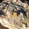 Halssmycke med Citrin sten
