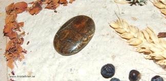 Boulder Koroit Opal sten 34x23mm
