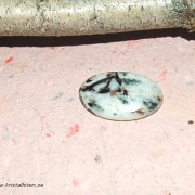 Astrofyllit  sten cab 33x21mm