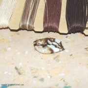 Arizona Wild Horse /Magnesit sten 33x19mm