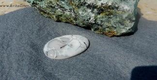 Dendritisk Opal Agat sten 41x24mm