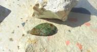 Magnaprase sten