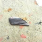 Sarape Agat sten 50x19mm fri form