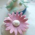 täckt rosa blomma