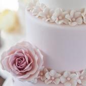 Cake_me_happy_7522